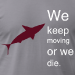 We Live Like Sharks